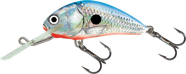 Salmo hornet floating 4 cm Silver Blue Shad