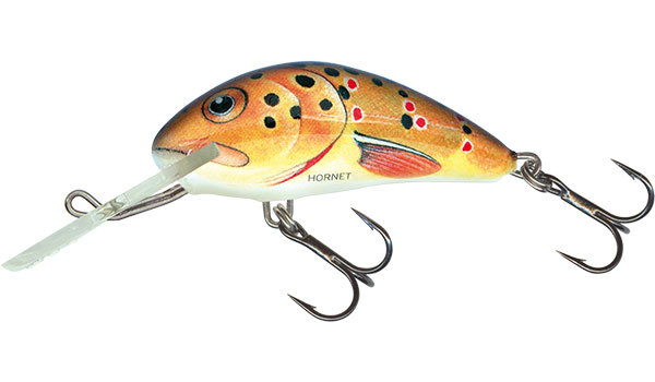 Salmo hornet floating 4 cm Trout